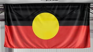 The Government Has Voted Against Hanging The Aboriginal And Torres Strait Islander Flags In Parliament