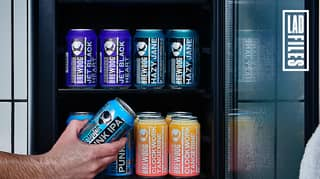 Staying At The BrewDog Kennels, A Hotel Dedicated To Drinking Beer