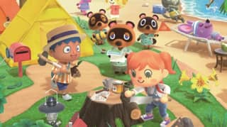 Couple Have Surprise Wedding On Animal Crossing After Their Ceremony Was Banned