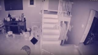 Man Catches Ghost Child And Its Pet On CCTV Footage