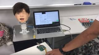 Scientists In Japan Unveil Robot That Can Feel Pain