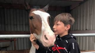 Boy Jumps Into Freezing Canal To Rescue Drowning Horse