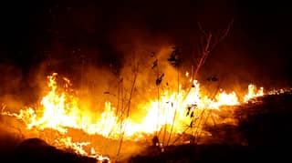 Brazil Has Sent In Warplanes To Put Out Fires In The Amazon