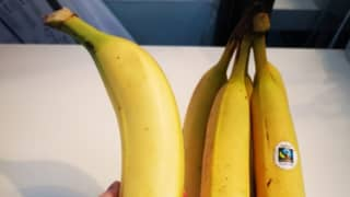 Fruit Lover Shocked To Discover Banana The Size Of Her Arm