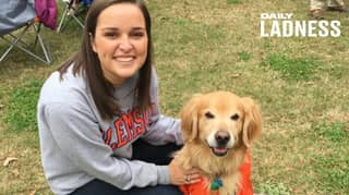 Woman's Emotional Obituary For Beloved Dog Charlie Goes Viral