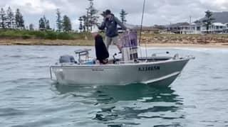 Mega Shark Circles Fishing Boat During Feeding Frenzy At NSW Beach