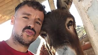 Donkey And Her Owner Share Emotional Reunion As Spain Eases Lockdown