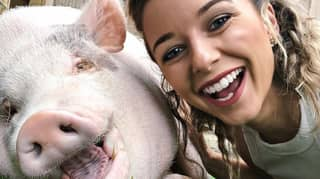 YouTuber Says Her 80kg Pet Pig Is 'Like A Son' To Her