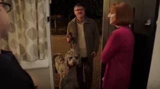 Friday Night Dinner Viewers Already Love Jim's New Dog Milson