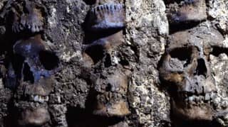 More Than 100 Skulls Discovered Beneath Mexico City During New Dig