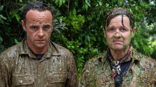 Ant And Dec Have Tackled Their First Ever Bushtucker Trial
