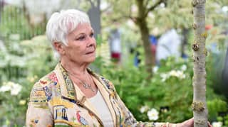 Dame Judi Dench Says She Feels '39 And 6ft Tall'