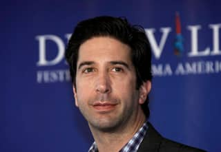 David Schwimmer Struggled With Fame When He Was In 'Friends'