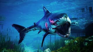 ​Shark Game Maneater Is Out Now On PS4, Xbox One And PC