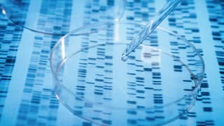 Man Gets Woman DNA Test For Christmas, Uncovers Family Secret Of 30 Years