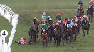 ​Horse Breaks Leg At Cheltenham Festival In Horrific Fall And Is Put Down