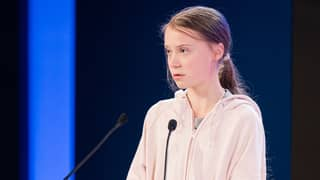 Greta Thunberg Says Trump's Pledge To Help Plant A Trillion Trees Is Not Enough