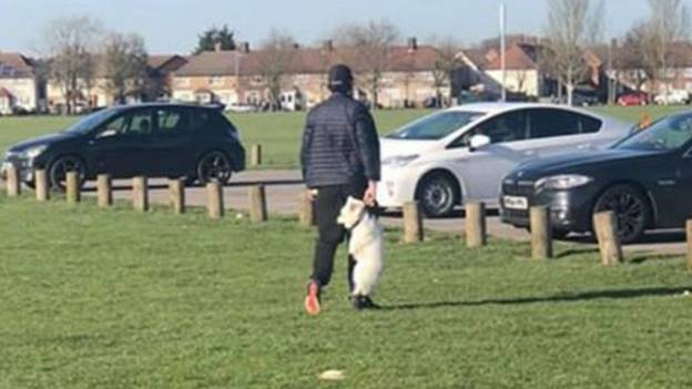 RSPCA Searching For Man Seen Carrying Dog By Collar In Park
