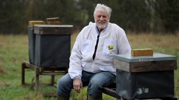 Beekeeper Told 15 Million Bees He Ordered Could Be Killed Because Of Brexit