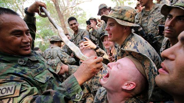 Military Training Drills Where Soldiers Eat Live Animals And Drink Snake Blood Could Spark New Pandemic, Says PETA