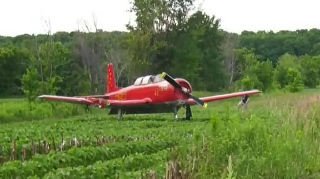 Woman Killed By Landing Plane As She Mowed Grass