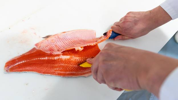 Farmed Salmon Are Fed Chemical To Turn Flesh Pink