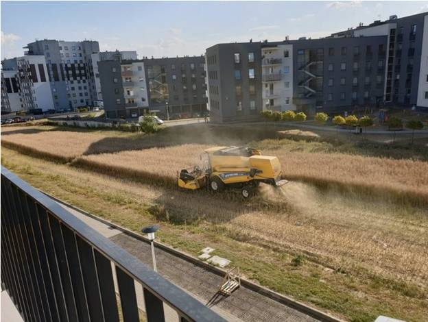 Polish Farmer Who Refused To Sell Land Harvests Field Surrounded By Apartment Blocks