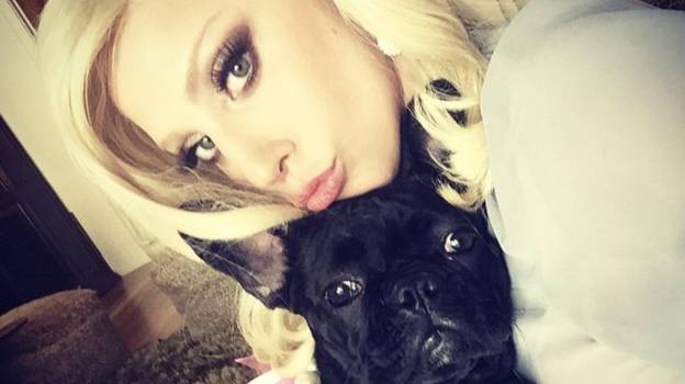 Lady Gaga Will Reportedly Pay £70,000 Medical Bill Of Shot Dog Walker