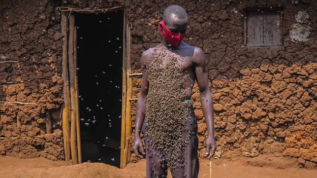 'King Of Bees' With Swarm Around His Body Claims He's Never Been Stung