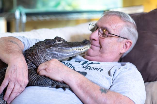 Wally became an emotional support animal after Henney's doctor was impressed by the positive effects on his mental health. Credit: Marcus Cooper/Barcroft Media via Getty Images