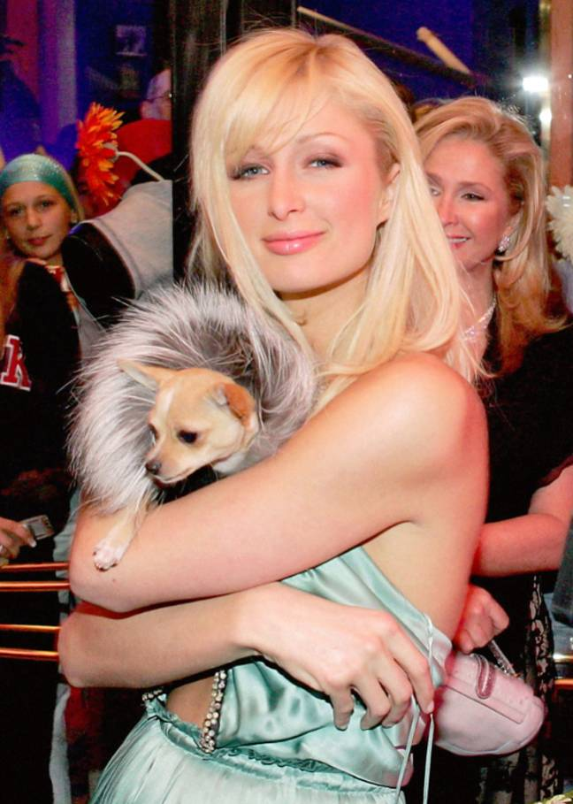 Hilton with her dog Tinkerbell in 2005. Credit: PA