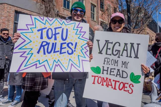 New York's Annual Veggie Pride Parade. Credit: PA