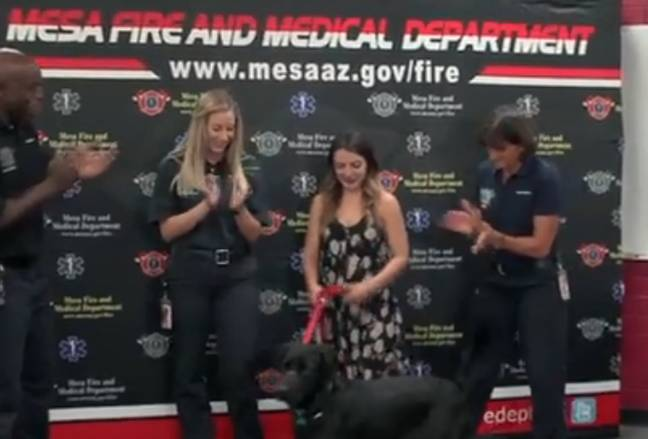 Credit: Mesa Fire and Medical Department