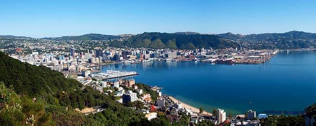 Wellington. Credit: Ulrich Lange (Creative Commons)