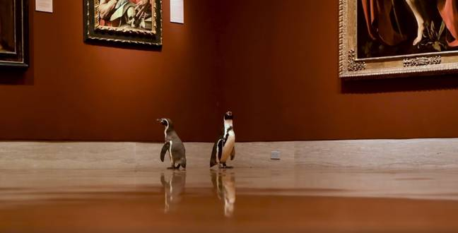 The penguins are really getting into art history. Credit: The Nelson-Atkins Museum of Art