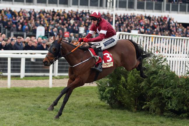 Tiger Roll at Cheltenham earlier this year. Credit: PA
