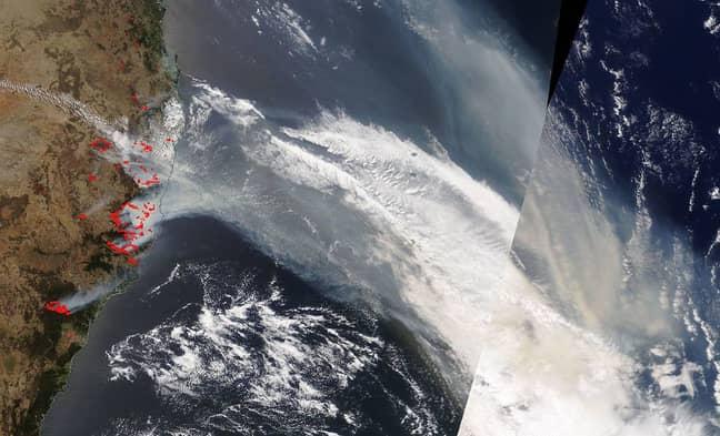 NASA satellite imagery showing smoke from bushfires, as of 13 November. Credit: NASA