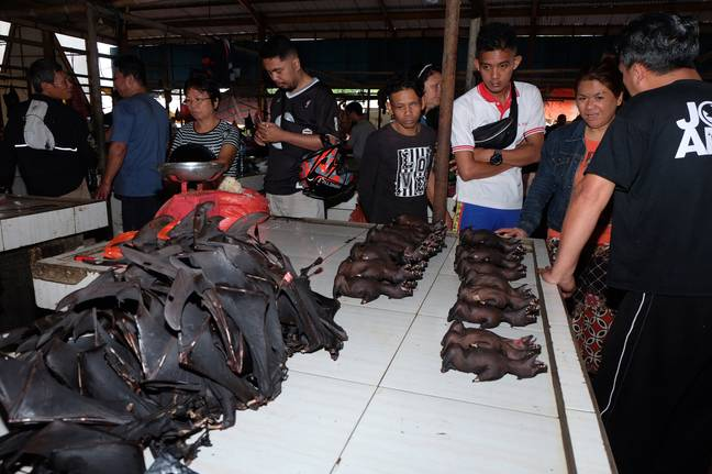 More bats are butchered for sale. Credit: PA