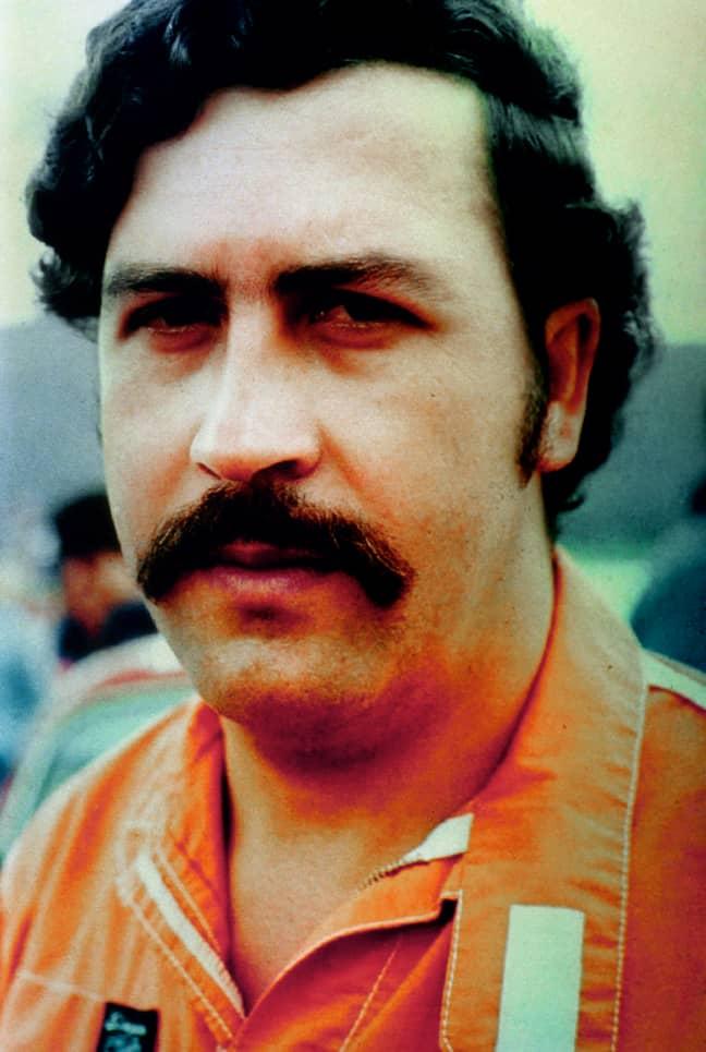 Pablo Escobar. Credit: PA