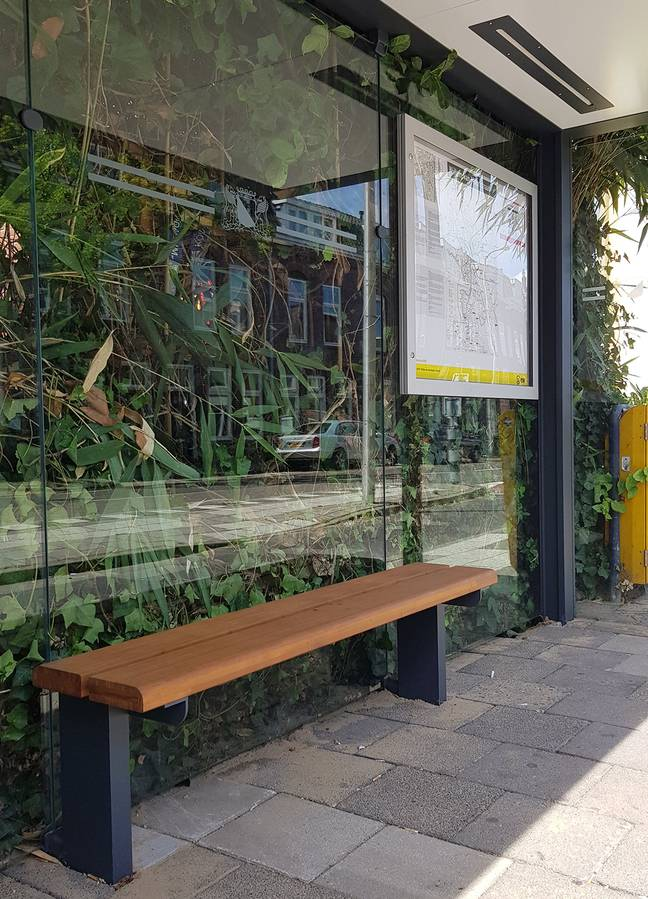 The bus shelters have bamboo benches and solar-powered lighting