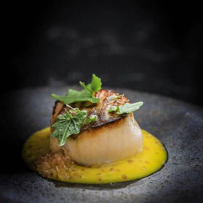 Lucky Cat's Orkney Scallop with yuzu and sweetcorn hot sauce, finger lime and wasabi leaves. Credit: Instagram