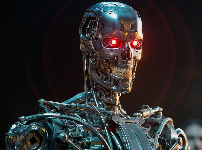 The robots are said to be like the Terminator but 'not as violent'. Credit: Orion Pictures