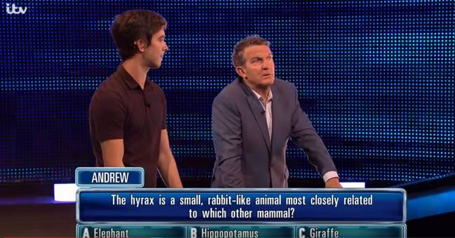 Ant and Dec were feeding answers through to contestants. Credit: ITV