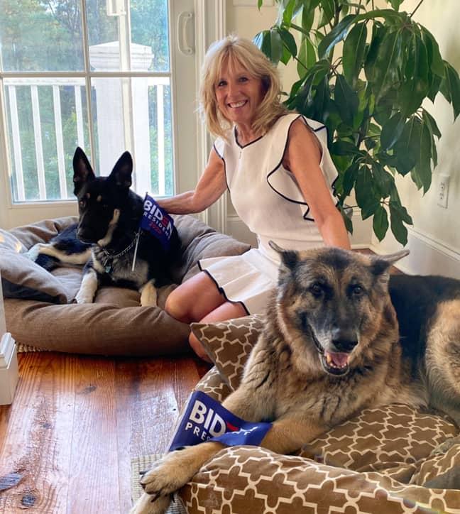 President Biden's Oldest Dog Dies At Age 13
