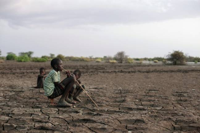 The trees have been planted in the drought-prone country. Credit: PA