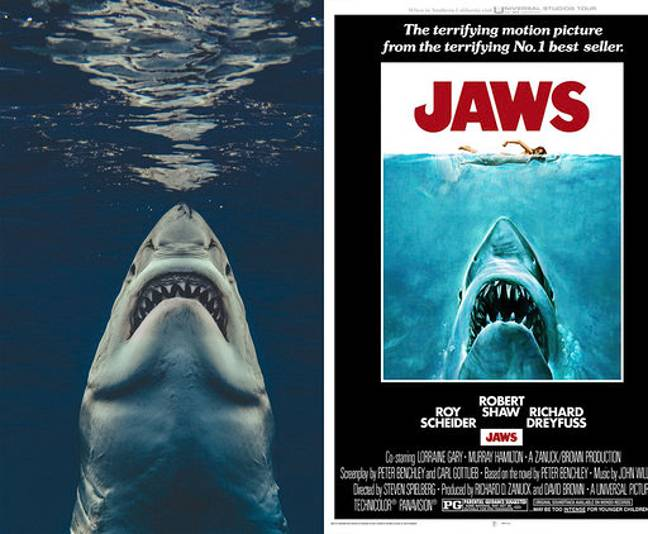 The great white shark perfectly recreated the Jaws poster. Credit: Magnus News Agency/Universal Pictures