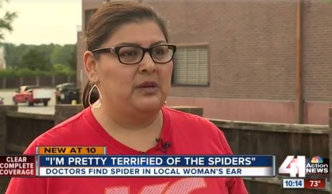 Susie Torres thought she had water in her ear, but it turned out to be a lot creepier. Credit: 41 Action News