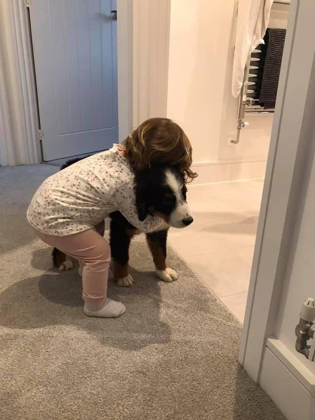 Luna and Jordan's daughter. Credit: Dogs Trust