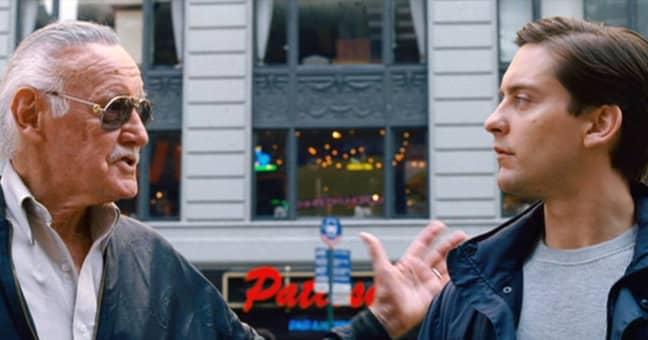 Stan Lee's Spider-Man cameo. Credit: Marvel