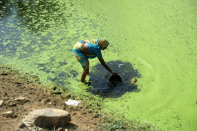 One of the many environmental issues plaguing India